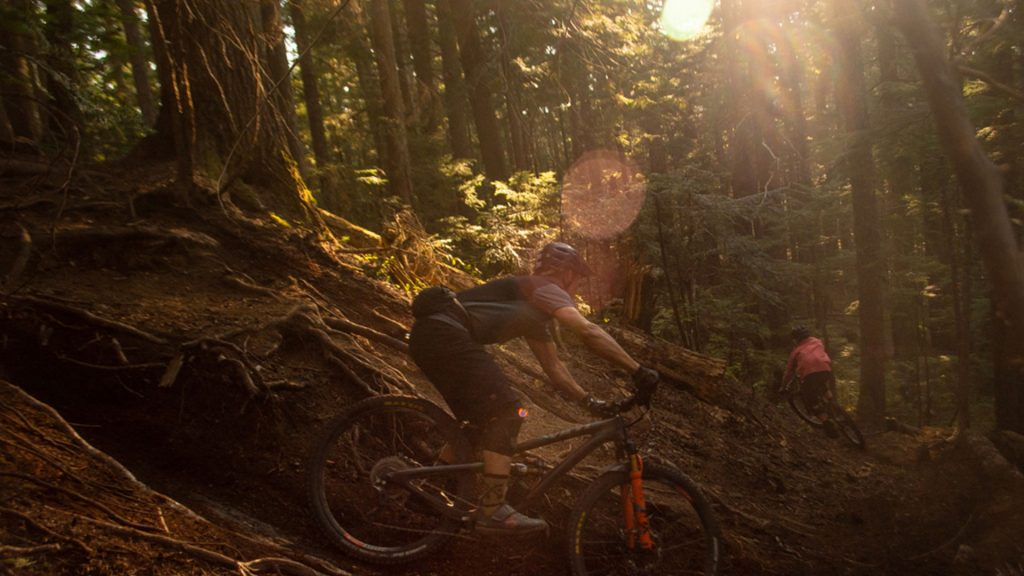 Mountain biking through a dense forest on Blackcomb Mountain