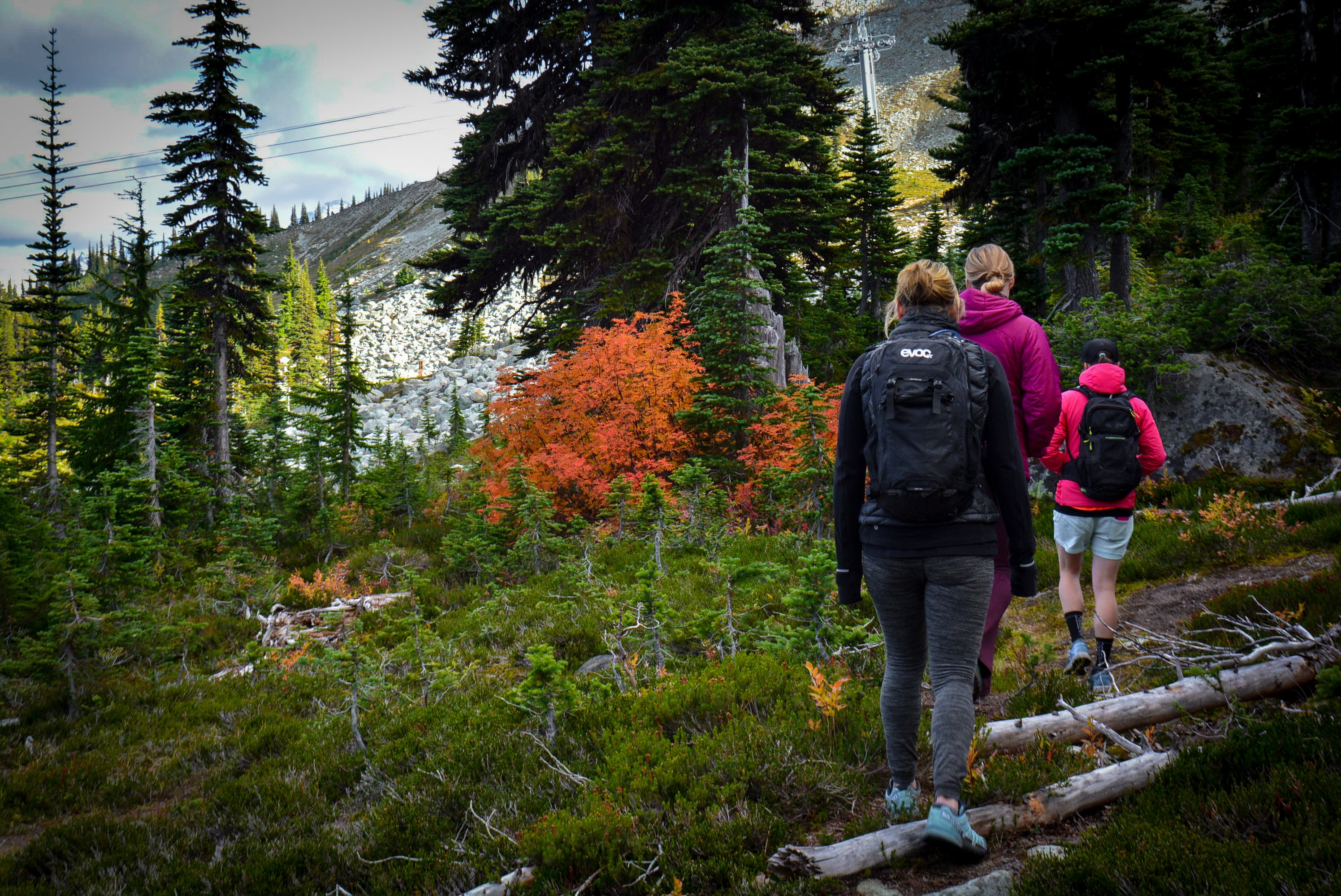Hiking on Whistler Mountain in the Fall