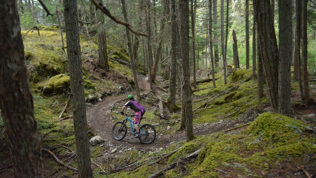 Mountain biker riding in the lost lake trail network in Whistler, BC.
