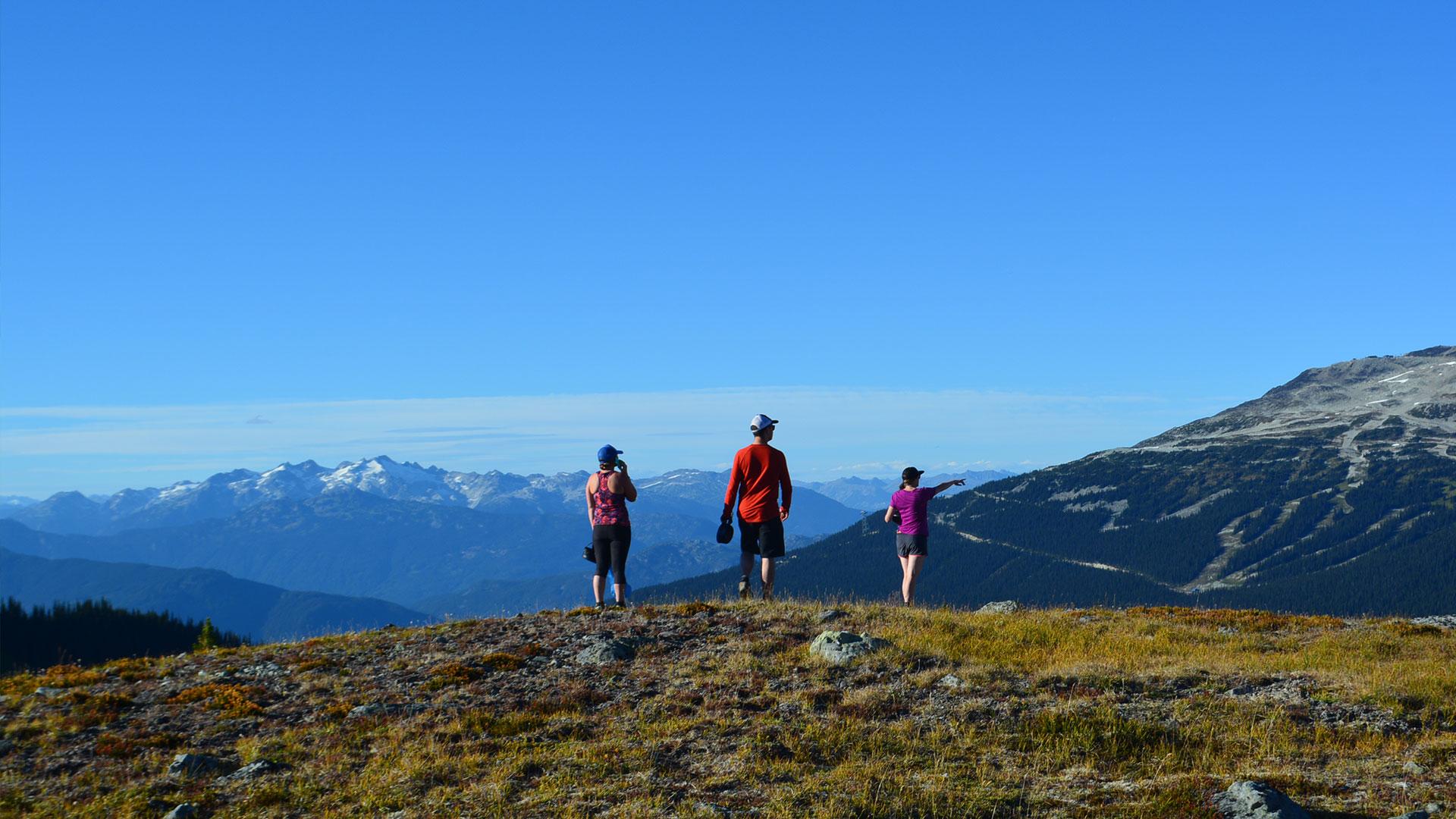 Hiking in an alpine setting on whistler mountain